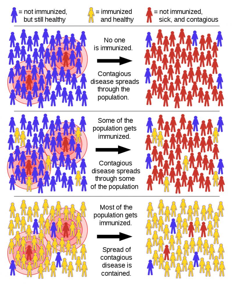 مناعة القطيع Herd immunity.png