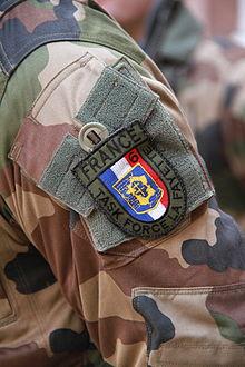 220px-Task_force_Lafayette_prise_d'armes_Strasbourg_31_janvier_2013_01.JPG