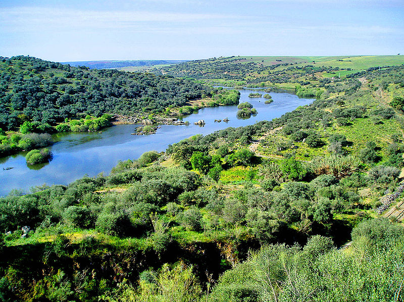 800px-Guadiana_river.jpg