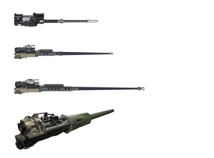 F-Bushmaster-Gun-Portfolio-696x514-1.png