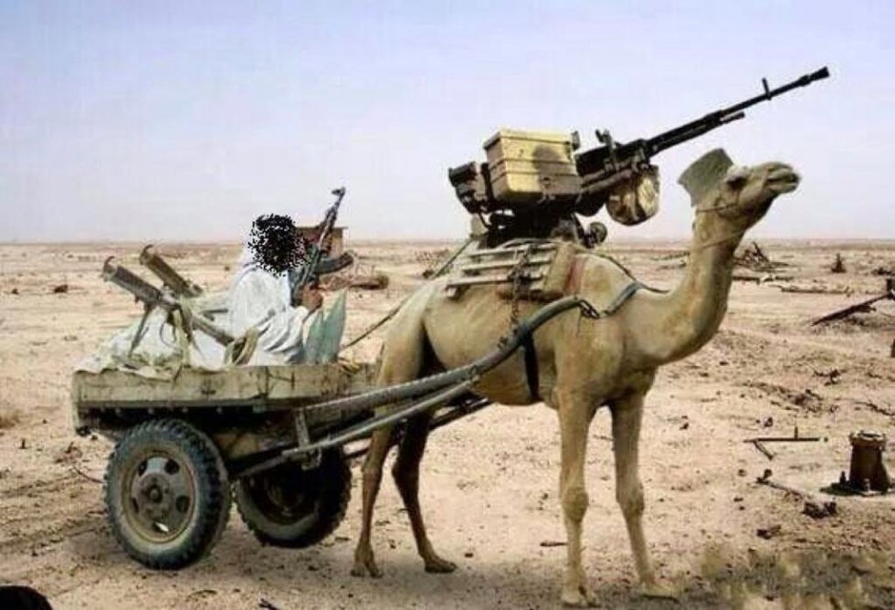 Funny-Military-Camel-Cart-Picture.jpg