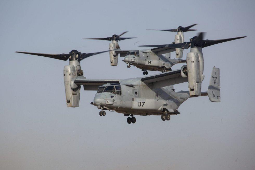 Ospreys-Over-Spain.jpg