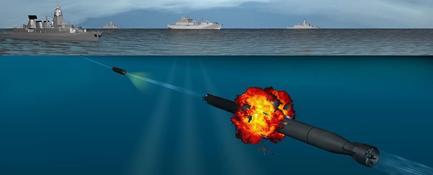 SeaSpider-Anti-Torpedo-Torpedo.jpg